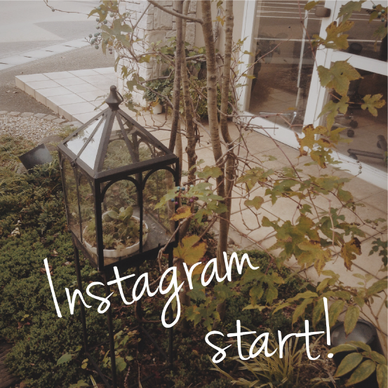 instagram start!
